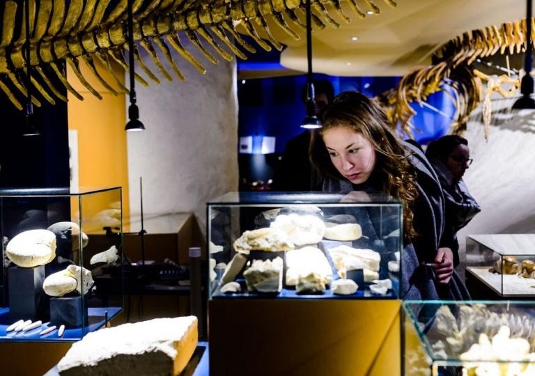 MuseumnachtMaastricht-NatuurhistorischMuseum-223d8769.jpg